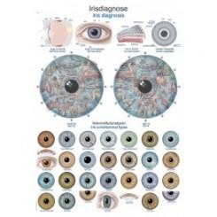 Plakat Iris Diagnosis 50X70 cm.